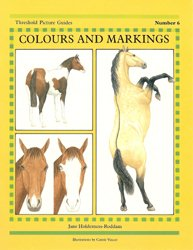 colours-markings-250h