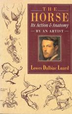 horse-action-anatomy-230h