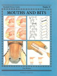 mouths-bits-250h